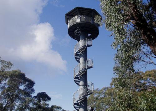 Trike Trips - Illawarra Fly - 04